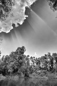 Sonnenstrahlen über dem Altrhein - Rheinauen, mittlerer Oberrhein bei Au am Rhein, Deutschland Crepuscular rays at the Old Rhine - Germany - mehr dazu im Blog: Altrhein in Schwarzweiß