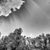 """Sonnenstrahlen über dem Altrhein - Rheinauen, mittlerer Oberrhein bei Au am Rhein, Deutschland<br /> Crepuscular rays at the Old Rhine - Germany<br /> - mehr dazu im Blog: <a href=""""http://arnohelfer.wordpress.com/2012/08/25/altrhein-in-schwarzweis/"""">Altrhein in Schwarzweiß</a>"""