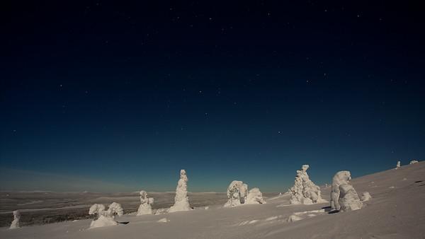 Winterwunderland um Mitternacht auf dem Akkanolke bei Arvidsjaur - Lappland, Schweden  Winter Wonderland at midnight on the Akkanolke near Arvidsjaur - Lapland, Sweden - mehr dazu im Blog: Winter in Lappland