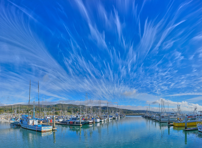 Sky Plume, Pillar Point Harbor, Half Moon Bay, CA