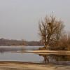 """Kleine Insel - Fermasee, Rheinstetten, Deutschland<br /><br />  Small island - Fermasee, Rheinstetten, Germany<br /><br /> - mehr dazu im Blog: <br /><a href=""""http://arnohelfer.wordpress.com/2013/02/04/sony-rx100-und-canon-5d-mark-iii/"""">SONY RX100 und CANON 5D Mark III</a><br />"""