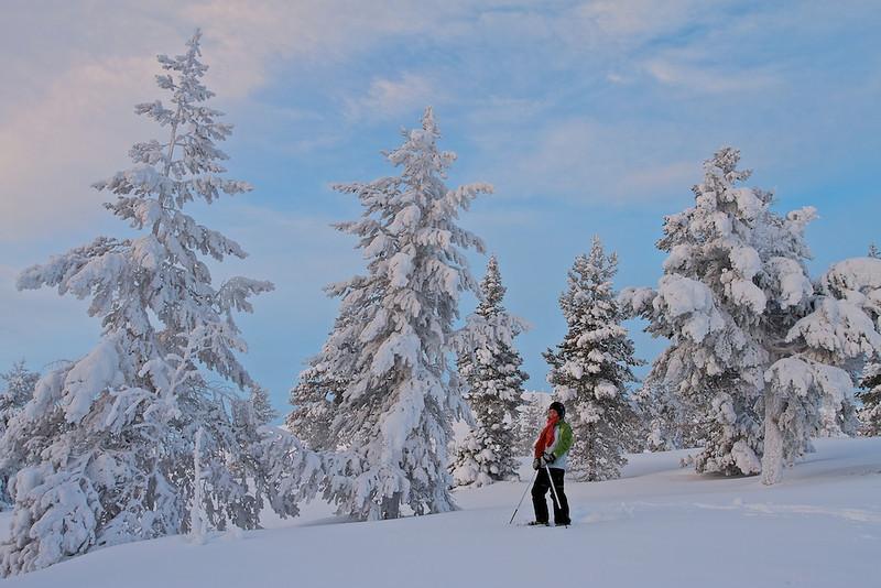 "Mit den Schneeschuhen durch das Fjäll bei Vittjåkk - Arvidsjaur,  Lappland, Schweden<br /><br />  With snowshoes through the mountains near Vittjåkk - Arvidsjaur,  Lapland, Sweden<br /><br /> - mehr dazu im Blog: <br /><a href=""http://arnohelfer.wordpress.com/2013/01/06/winter-in-lappland/"">Winter in Lappland</a><br />"