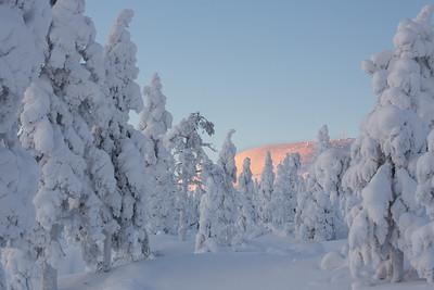 Winterlandschaft bei Vittjåkk - Arvidsjaur,  Lappland, Schweden  Winterlandscape near Vittjåkk - Arvidsjaur,  Lapland, Sweden - mehr dazu im Blog: Winter in Lappland