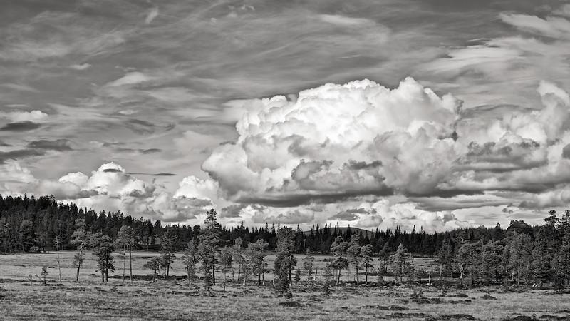 Skäckerfjällen in Jämtland, Schweden