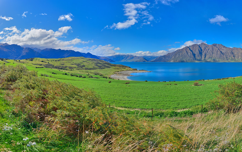 Lake Hawea Vista #1, South Island, New Zealand