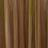 """Pappelwald abstrakt<br /> Populus Forest abstractly<br /> - mehr dazu im Blog: <a href=""""http://arnohelfer.wordpress.com/2012/04/16/pappelwald-rheinauen/"""">Pappelwald - Rheinauen</a>"""