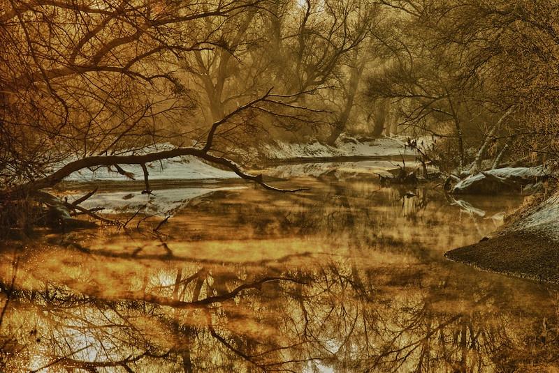 """Schnee und leichter Nebel im Gegenlicht am Bellenkopf- Altrhein bei Rheinstetten, Deutschland<br /> <br /> Snow and Fog in the Backlight at a place called 'Bellenkopf' - Altrhein near Rheinstetten, Germany<br /> <br /> Same Place, different conditions - see here: <a href=""""http://arnohelfer.smugmug.com/Nature/Images/15468843_Co942#1159800523_Jk7zC"""">in Summer</a>"""