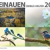 RHEINAUEN-Kalender 2021