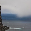 Látrabjarg, Europes West-End - Iceland<br /> Home of many birds like puffins, razorbills, ... Europe's largest bird cliff