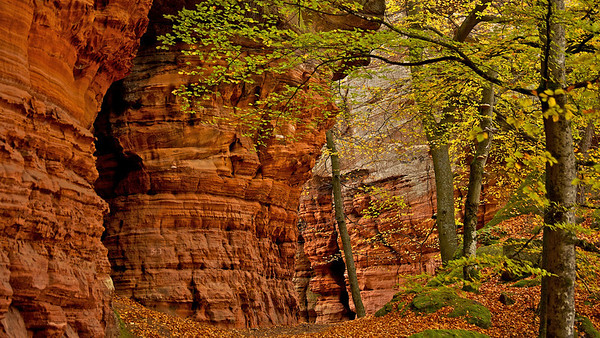 Altschlossfelsen - Eppenbrunn, Deutschland  Altschlossfelsen - Eppenbrunn, Germany  - mehr dazu im Blog: Altschlossfelsen