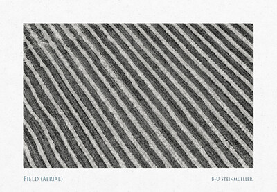 Field (Aerial)