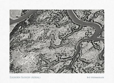 Elkhorn Slough (Aerial)
