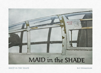MAID in the Shade