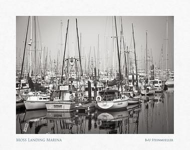 Moss Landing Marina
