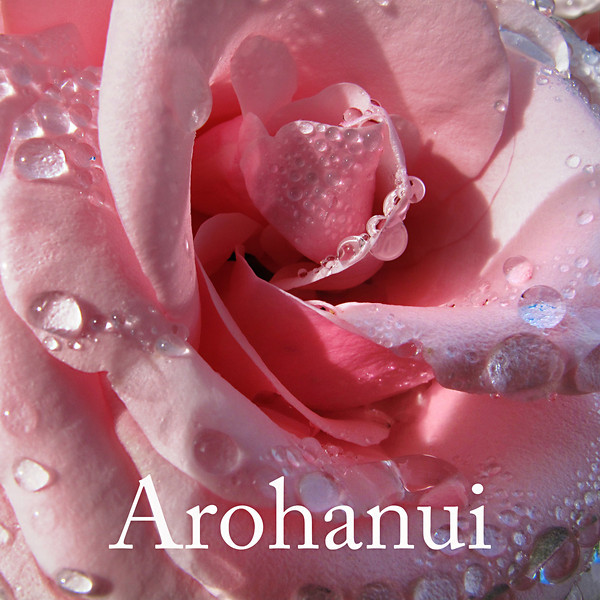 "TL Rose001.jpg<br /> Valentines day or appreciation tiles<br /> 0 x 10.8 x10.8cm/4x4"" in stock<br /> <br /> ""Arohanui"" is a Maori way of saying ""with big love"" and the rose image is from a sunny morning ramble around the lush and colourful gardens of Mona Vale in Christchurch."