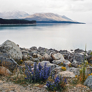 "TSS LakePukaki 002.jpg 0 10.8x10.8cm/4x4"" in stock 0 15x15cm/6x6"" in stock South Island New Zealand"
