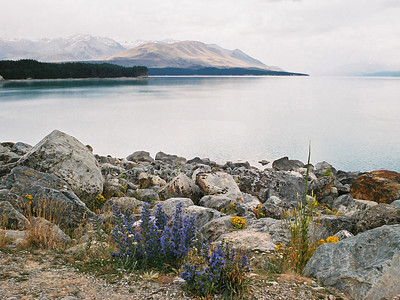 "TSS LakePukaki 001.5.jpg 0 15x20cm/6x8"" in stock South Island New Zealand"
