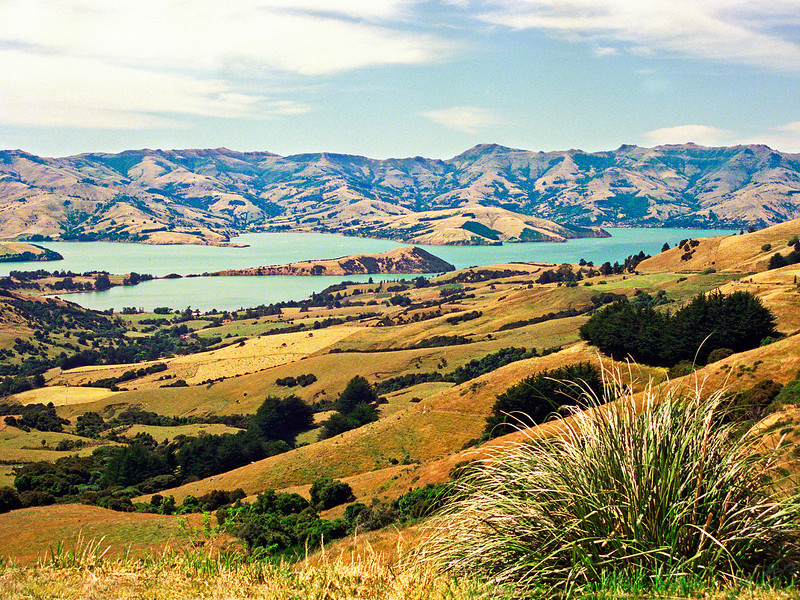 "TSS AkaroaHbr 002-6x8.jpg<br /> 3 15x20cm/6x8"" in stock<br /> Akaroa Harbour South Island New Zealand"