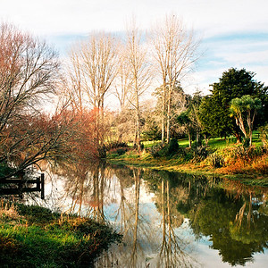 New Zealand North Island Scenes