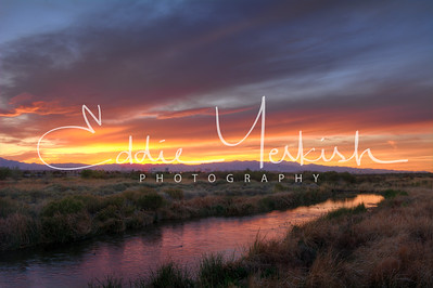 Clark County Wetlands At Sunset
