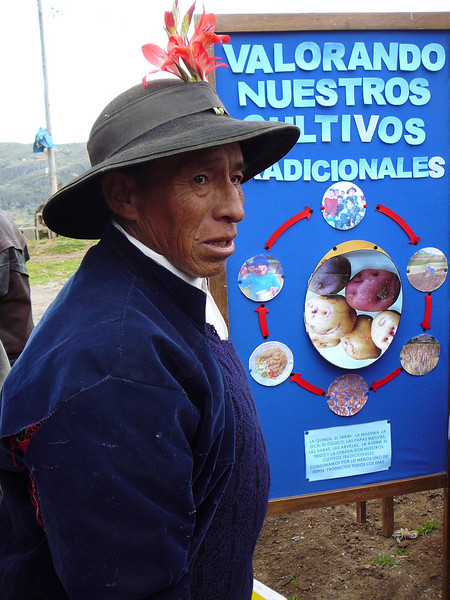 FAO project - Restoring traditional crops, in Padre Rumi, outside of Huancavelica, Peru. Credit: New Zealand Ministry of Foreign Affairs and Trade