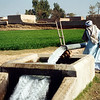 Village irrigation, Pakistan. Credit: New Zealand Ministry of Foreign Affairs and Trade