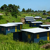 Rotahomes Koroipita Project, an urban settlement for disadvantaged families just outside Lautoka, Fiji. It includes a preschool, computer centre, community hall, workshop, and over 82 homes. Credit New Zealand Foreign Affairs and Trade.