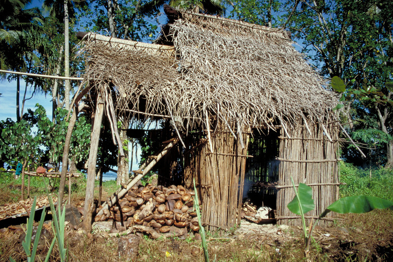 Grass hut with coconut husks. NZODA Ecotourism programme 1997, Bouma and Koroyanitu National Heritage Parks, Fiji. Credit: New Zealand Ministry of Foreign Affairs and Trade