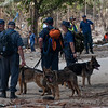 Tsunami relief  for Samoa. New Zealand Police sniffer dogshelps local Police, New Zealand Defence Personnel and Australian Fire services in searching for bodies buried among the rubble and debris of the destruction caused by the Tsunami. Credit: NZDF