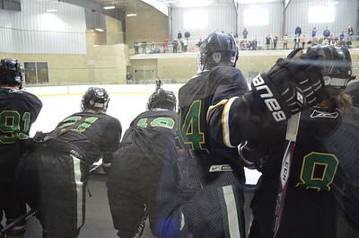 2015-02-07 LIFE Hockey v Clemson