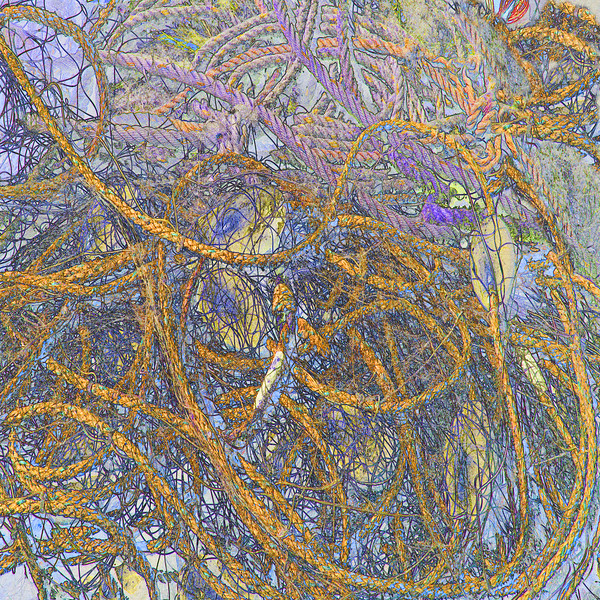 Fishing Nets,Erquy,Brittany~10002-2fes.