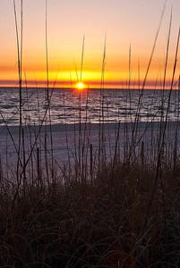 PCB Sunset & Grass