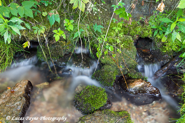 Big Springs at Bixby State Preserve near Edgewood in Northeast Iowa<br /> <br /> July 11, 2012