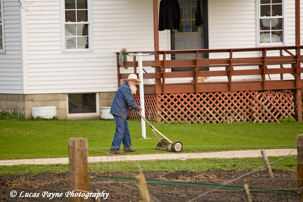 Amish man mowing lawn near Hazelton, Iowa.<br /> April 08, 2010