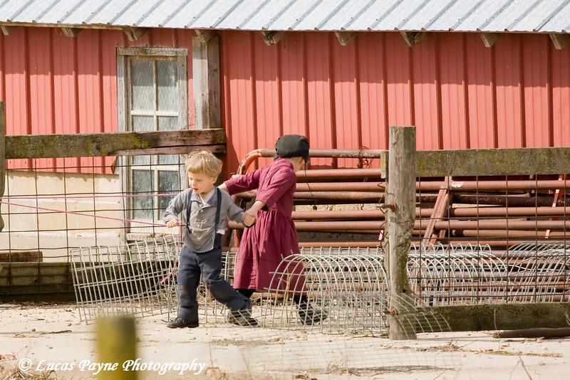 Amish children playing near Hazelton, Iowa.<br /> April 10, 2010
