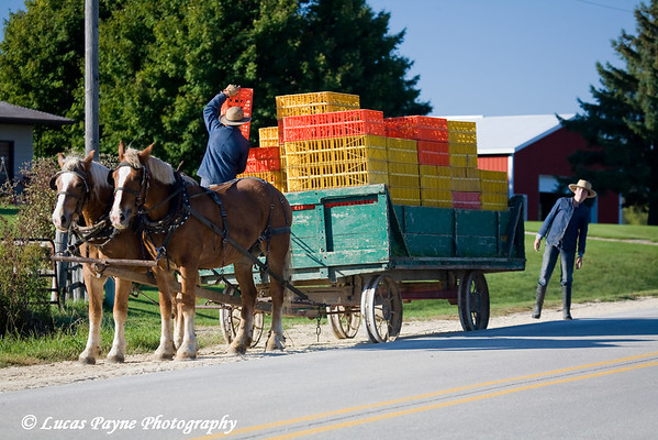 Amish in Iowa<br /> October 4, 2008