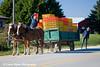Amish in Iowa<br /> October 4, 2008