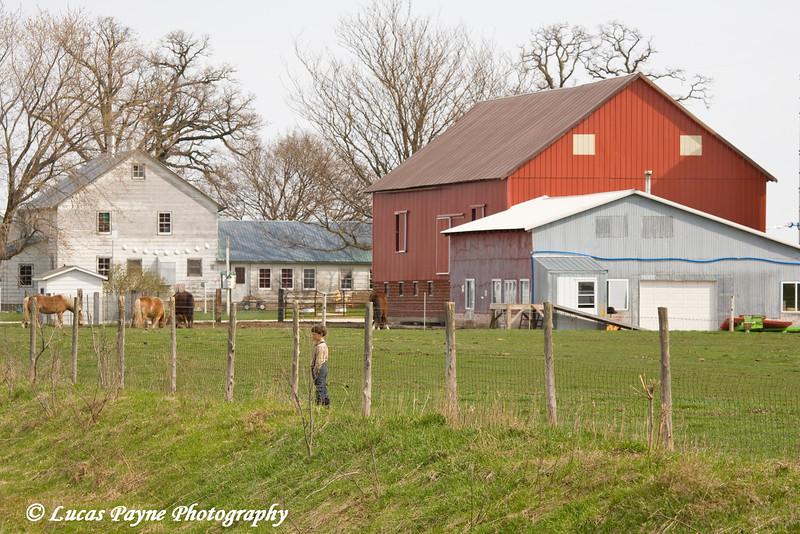 Amish boy and farm near Hazelton, Iowa.<br /> April 10, 2010