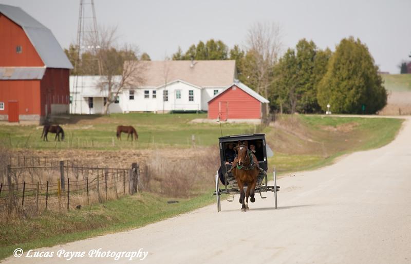 Amish horse and buggy near Hazelton, Iowa.<br /> April 10, 2010