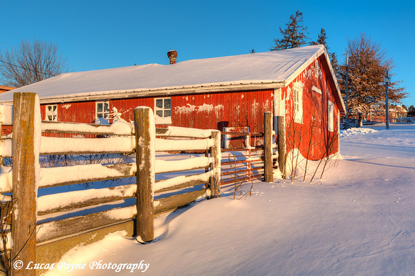 Red hog house with fresh snow on a farm near Edgewood in Northeast Iowa<br /> <br /> December 21, 2012
