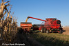 Red combine unloading beans into a grain wagon on a sunny autumn day in Northeast Iowa.   <br /> <br /> October 27, 2013