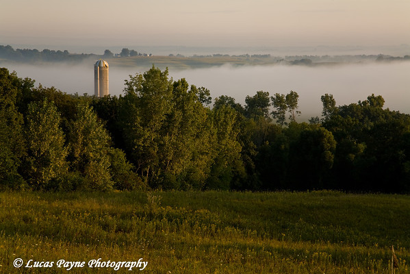 Early morning fog near Garber, Iowa. <br /> September 07, 2008