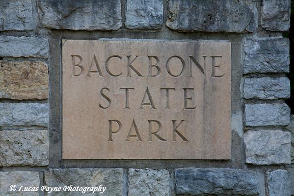 Backbone State Park near Strawberry Point, Iowa<br /> August 7, 2008