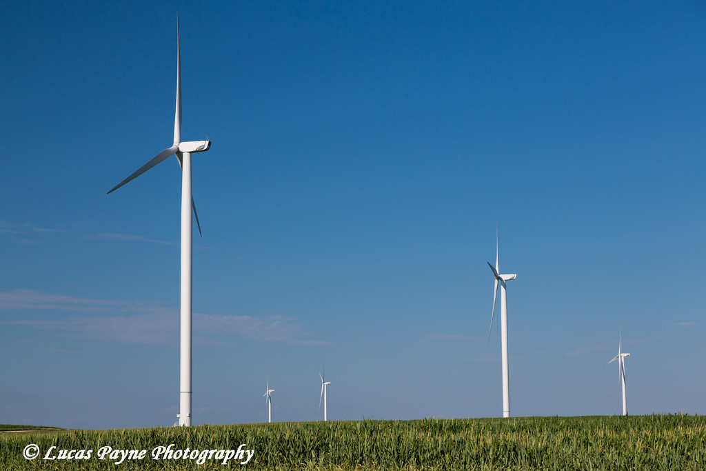 Wind turbines from the Elk Wind Energy Farm and a corn field near Edgewood in Northeast Iowa<br /> <br /> July 08, 2012