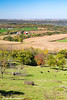 View of rolling farm fields with cattle grazing from an overlook near Balltown, Iowa<br /> <br /> October 17, 2017