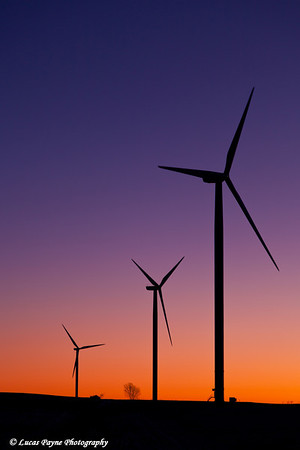Elk Wind Energy Farm at sunrise near Edgewood in Eastern Iowa.<br /> December 24, 2011