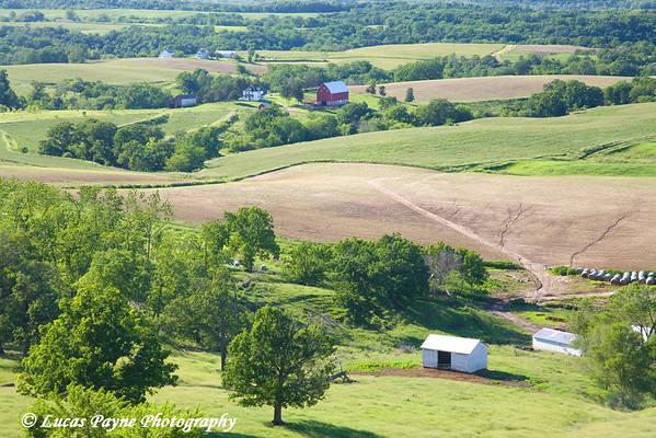 Farmland near Balltown, Iowa<br /> June 15, 2008