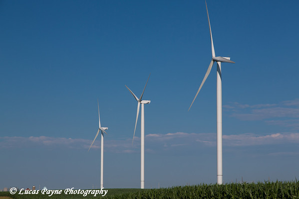 Wind turbine from the Elk Wind Energy Farm in a corn field near Edgewood in Northeast Iowa<br /> <br /> July 08, 2012