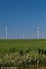 Wind turbine from the Elk Wind Energy Farm in a corn field near Edgewood in Northeast Iowa<br /> <br /> July 08, 2012