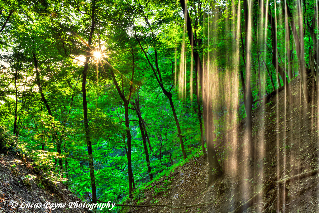 Summer sun shining on Bridal Veil Falls at Pikes Peak State Park in Northeast Iowa<br /> July 05, 2011<br /> HDR